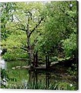 A River Runs Through Central Park  Acrylic Print