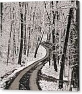 A Road Running Through Snow-covered Acrylic Print