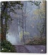 A Road Through A Misty Wood Acrylic Print