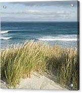 A Scenic Hillside Of The Beach Acrylic Print by Bill Hatcher