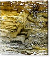 A Sea Of Raw Sienna Acrylic Print