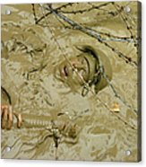A Seabee Emerges From Muddy Water Acrylic Print by Stocktrek Images