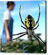 A Spider Beside Her Acrylic Print