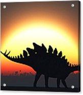A Stegosaurus Silhouetted Acrylic Print