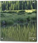 A Study In Green Acrylic Print