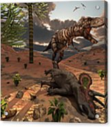 A T-rex Comes Across The Carcass Acrylic Print