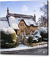 A Thatched Cottage In The Cotswolds  Acrylic Print by Andrew  Michael