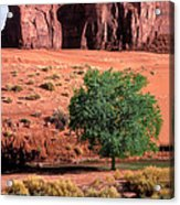 A Touch Of Green At Monument Valley Acrylic Print