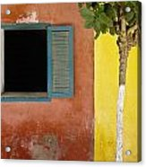 A Tree Outside A Colorful Building And Acrylic Print