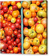 A Variety Of Fresh Tomatoes - 5d17904-long Acrylic Print by Wingsdomain Art and Photography