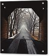 A View Down A Tree-lined Road Acrylic Print