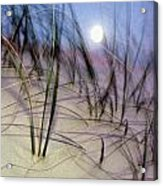 A View Of A Full Moon Rising Acrylic Print
