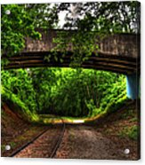A Walk Along The Tracks Acrylic Print
