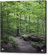 A Walk In The Catskills Acrylic Print