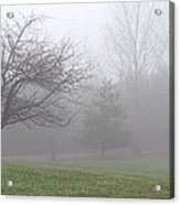 A Walk In The Land Of Mist Acrylic Print