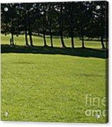 A Walk In The Park.. Acrylic Print
