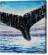 A Whale And A Violet Sunset Acrylic Print