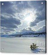 A Winter Sky Acrylic Print by Idaho Scenic Images Linda Lantzy