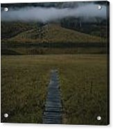 A Wooden Pathway Leads To An Acrylic Print by Randy Olson
