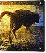 Aargh Acrylic Print