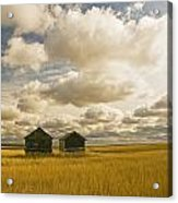 Abandoned Grain Bins With Hail Damaged Acrylic Print