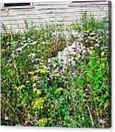 Abandoned Lot Acrylic Print