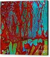 Abby Crack Acrylic Print
