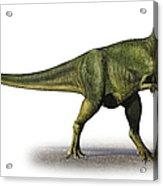 Abelisaurus Comahuensis, A Prehistoric Acrylic Print