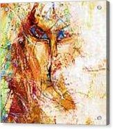 Abs 0062 Acrylic Print