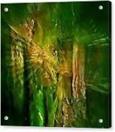 Abs 0260 Acrylic Print