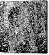 Abs 0284 Acrylic Print