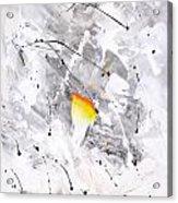 Abstraction 477-2013 Acrylic Print