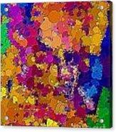 Abs 0483 Acrylic Print