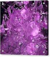 Abs 0571 Acrylic Print