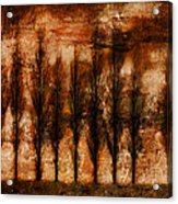 Absolution Acrylic Print