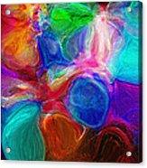 Abstract - Amoeba Acrylic Print by Steve Ohlsen