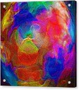 Abstract - The Egg Acrylic Print by Steve Ohlsen