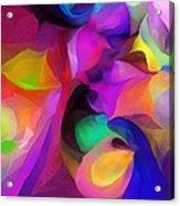 Abstract 041412 Acrylic Print