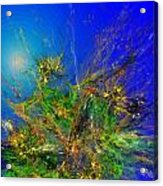 Abstract 090811 Acrylic Print