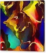 Abstract 091412 Acrylic Print