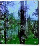 Abstract 113 Acrylic Print