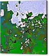 Abstract 218 Acrylic Print