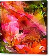 Abstract 273 Acrylic Print