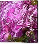 Abstract 274 Acrylic Print