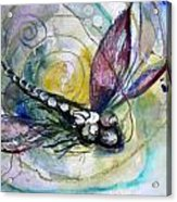 Abstract Dragonfly 11 Acrylic Print