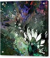 Abstract Dreamscape Number 2 Acrylic Print by Doris Wood
