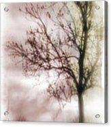 Abstract Fall Trees Acrylic Print