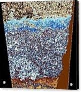 Abstract Fusion 153 Acrylic Print
