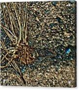 Abstract Grass Acrylic Print