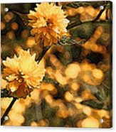 Abstract Of Yellow Flowers Acrylic Print